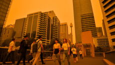 Pożary w Nowej Południowej Walii (PAP/EPA/PAUL BRAVEN)