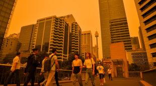 Pożary w Nowej Południowej Walii